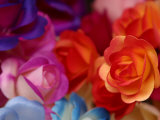 Vibrant and Colorful Arrangement of Beautiful Silk Roses Photographic Print