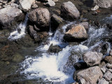 Rushing and Rapid River Stream over Rocks Photographic Print