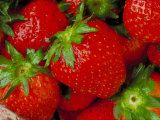 Pile of Fresh and Juicy Strawberries Photographic Print