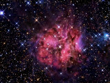 Cocoon Nebula Photographic Print by  Stocktrek Images