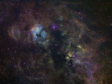 Narrowband Emission in Cygnus Photographic Print by  Stocktrek Images