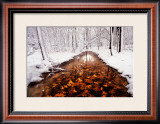 Autumn Passage Prints by Jim Brandenburg