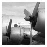 Vintage Flight I Posters by Janet Van Arsdale