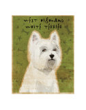 West Highland White Terrier Láminas por John Golden