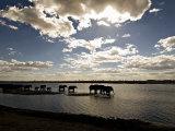 Elephant Herd, Botswana Poster af Mike Powles