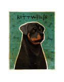 Rottweiler Art by John Golden