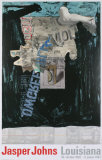 Decoy Reproductions pour les collectionneurs par Jasper Johns
