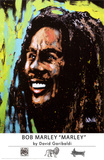 Bob Marley Prints by David Garibaldi