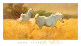 Meadow Kunstdrucke von Lani Vlaanderen