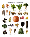 Vegetables of Yesteryears Prints