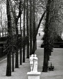 Parc de Saint-Cloud, c.1981 Print by Edouard Boubat