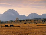 Jackson, Teton Range, Wyoming, USA Photographic Print by Walter Bibikow