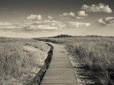 Boardwalk, Good Harbour Beach, Gloucester, Cape Ann, Massachusetts, USA Photographic Print by Walter Bibikow