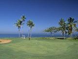 Denarau Golf Course, Danarau, Viti Levu, Fiji Photographic Print by Neil Farrin