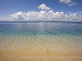 Colon Island Star Beach, Bocas Del Toro Province, Panama Photographic Print by Jane Sweeney