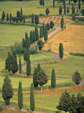 Monticchiello, Tuscany, Italy Photographic Print by Walter Bibikow