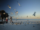 Clearwater Beach, Florida, USA Photographic Print by John Coletti