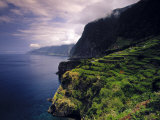Terraced Vineyards, Seixal, Madeira, Portugal Photographic Print by Walter Bibikow