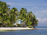 Ranguana Caye, Belize Photographic Print by Jane Sweeney