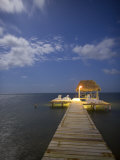 Caye Caulker, Belize Photographic Print by Russell Young