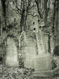 Highgate Cemetery, London, England Photographie par Jon Arnold