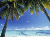 Tropical Beach, North Aitutaki Island, Cook Islands Fotodruck von Peter Adams