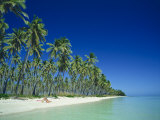 Plantation Island, Fiji Photographic Print by Steve Vidler