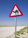 Road Sign-Road to Al-Zubar, Al-Zubara, Qatar Photographic Print by Walter Bibikow