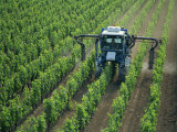 Vine Spraying, St.Emilion, Bordeaux Region, Aquitaine, France Photographic Print by Steve Vidler