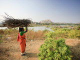 Woman Working Near Hampi, Karnataka, India Photographic Print by Michele Falzone