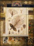 Pina's Chimana Prints by John Douglas