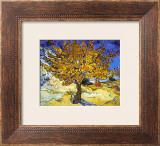 Mulberry Tree, c.1889 Prints by Vincent van Gogh