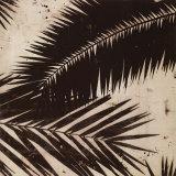 Palmy II Konst av J.b. Hall