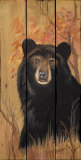 Bear Art by Penny Wagner