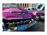 Desoto in Pink Giclee Print by Charles Glover
