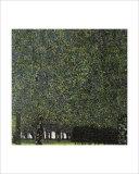 Park Giclee Print by Gustav Klimt