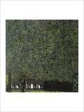 Gustav Klimt - Park Digitálně vytištěná reprodukce