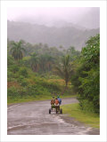 Cuban Landscape Giclee Print by Charles Glover