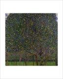 Pear Tree Giclee Print by Gustav Klimt