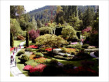 Butchart Gardens, Vancouver Island, Canada Giclee Print by Eric Curre