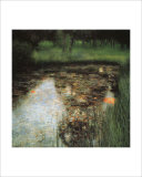 The Swamp Gicléedruk van Gustav Klimt