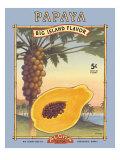 Papaya Giclee Print by Kerne Erickson