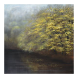 Misty River Giclee Print by Robert Striffolino