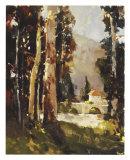 Italian Villa Giclée-tryk af Ted Goerschner