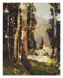 Italian Villa Giclee Print by Ted Goerschner