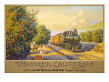 Wonderful Califonia Giclee Print by Kerne Erickson