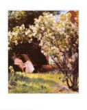 Marie Kroyer in her Garden Poster by Peder Severin Kröyer