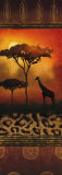 Giraffe at Sunset Prints by Nicola Rabbett