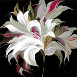 Lily XX Print by Sally Scaffardi