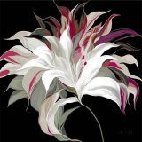 Lily XXI Prints by Sally Scaffardi